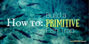 How to Make a Fishing Weir Trap