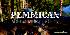 Pemmican - What it is How to Make it and Recipes