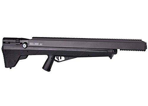 air rifle for self defense