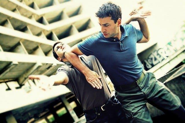 martial arts for self defense krav maga systema muay thai brazilian jiu jitsu boxing