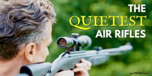 Top 10 Quietest Air Rifles for Hunting and Backyards